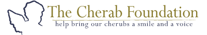 The Cherab Foundation